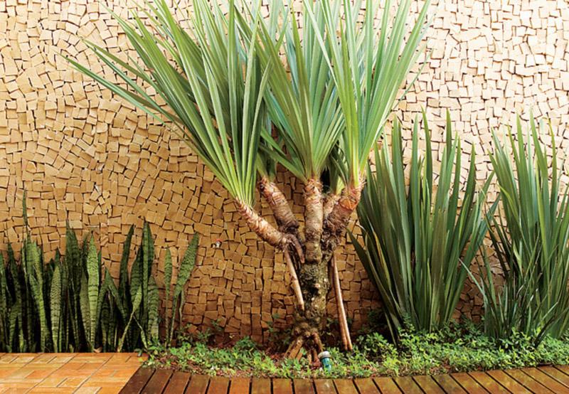 Fonte: Revista Casa e Jardim