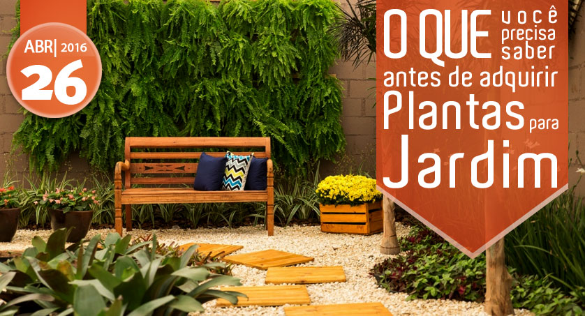 plantas para montar um jardim de inverno : plantas para montar um jardim de inverno:que você precisa saber antes de adquirir plantas para jardim