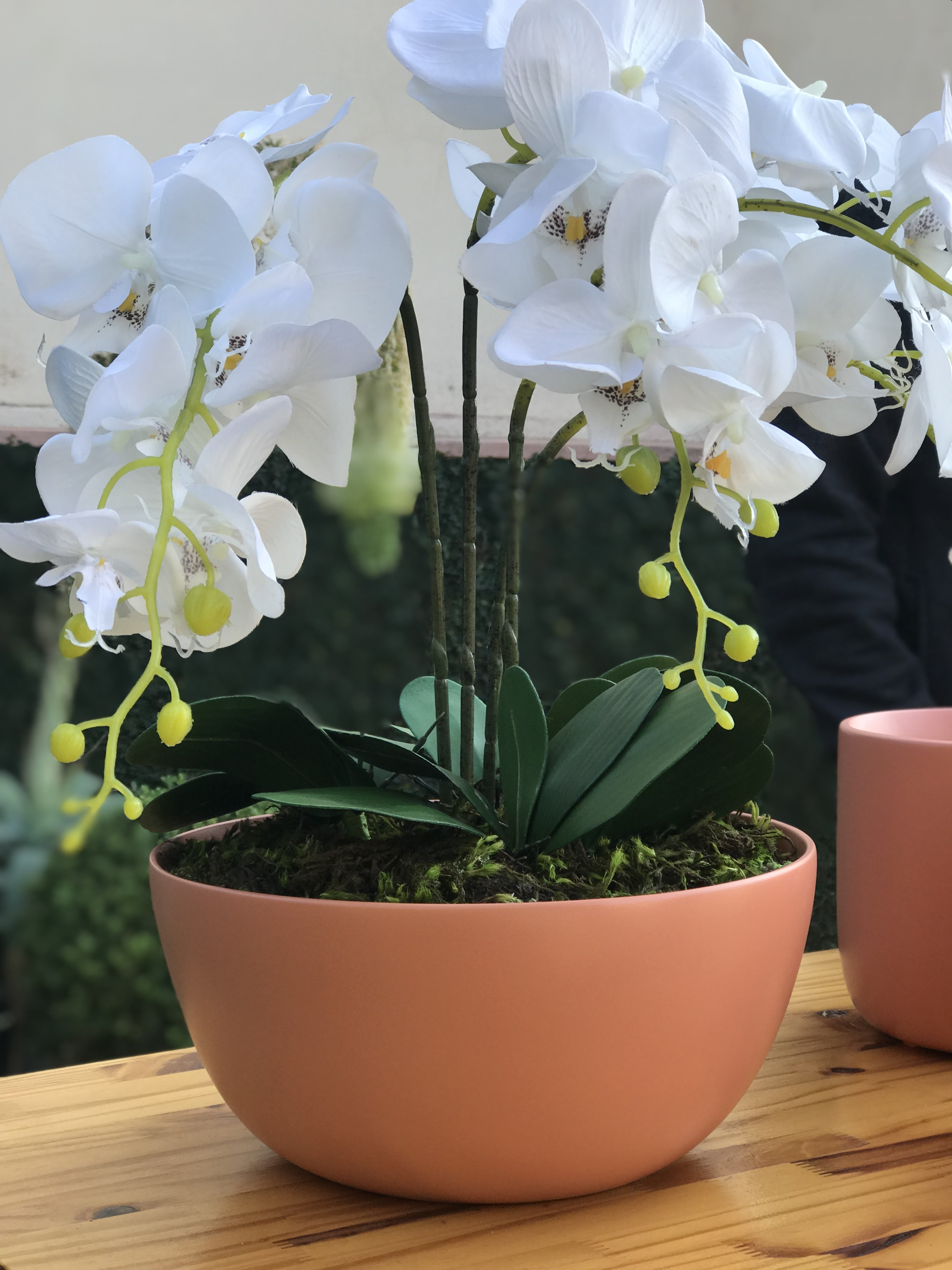 Arranjo com vaso terracota em cerâmica com orquídea branca